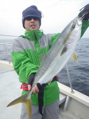 FISH8141