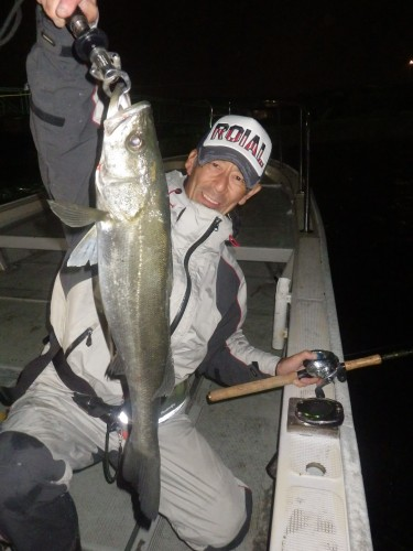 FISH8153