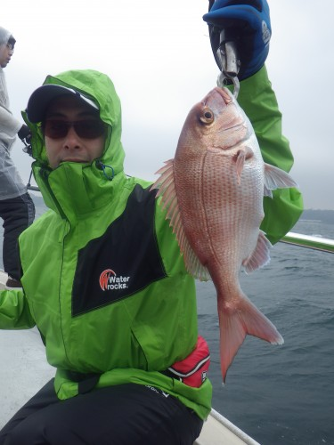 FISH8157