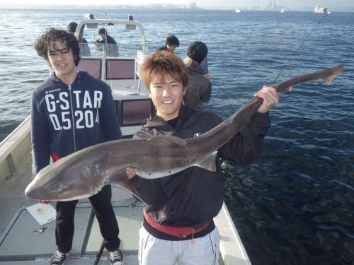 FISH8166