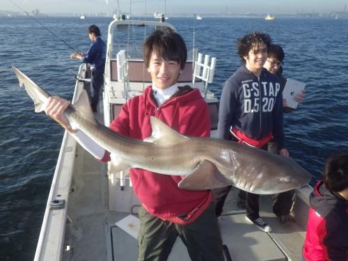 FISH8168