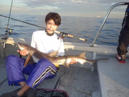 FISH8170