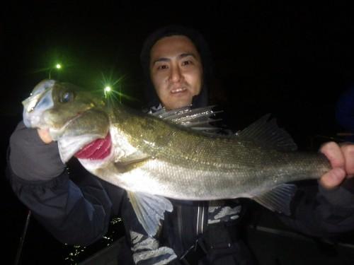 FISH8179