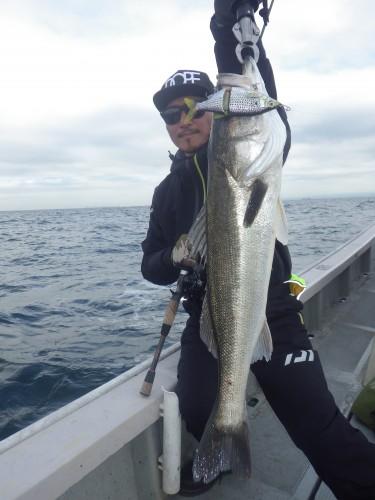 FISH8185