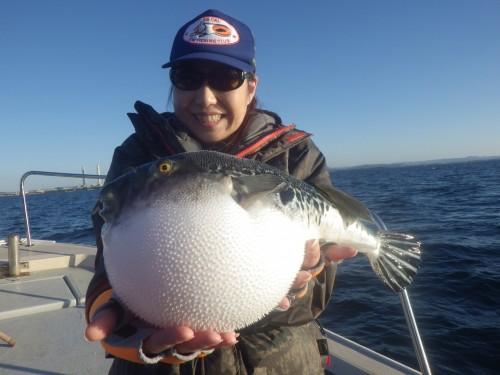 FISH8248