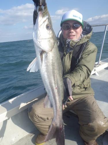 FISH8321e