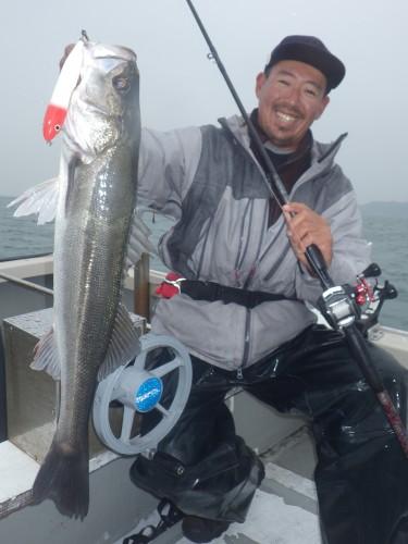 FISH8328c