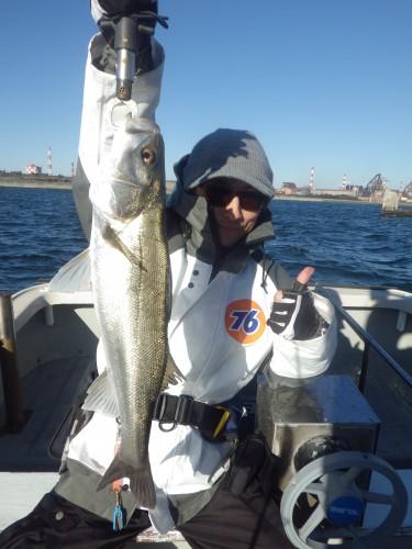 FISH8365