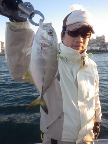 FISH8367