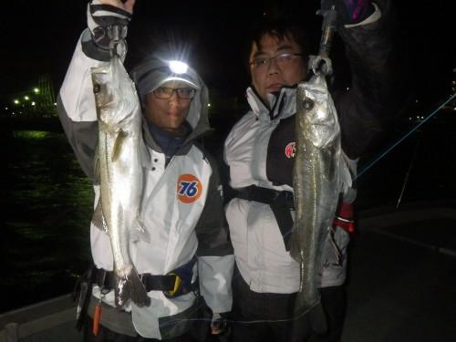 FISH8369