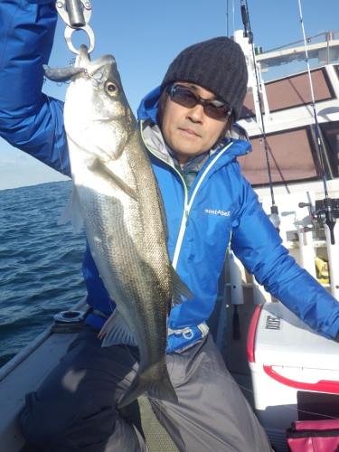 FISH8391s