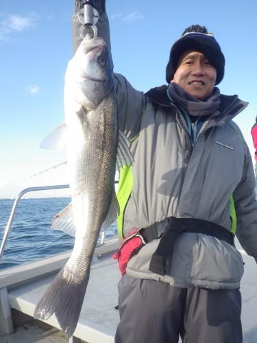 FISH8426