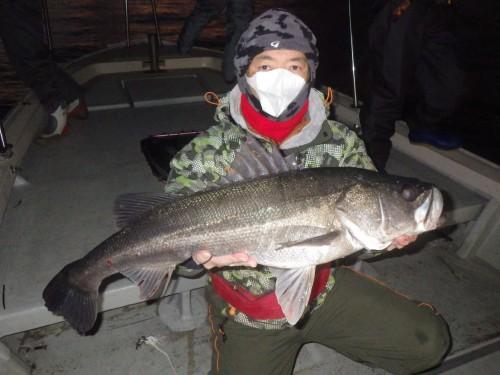 FISH8432
