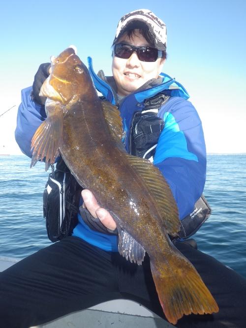 FISH8439s