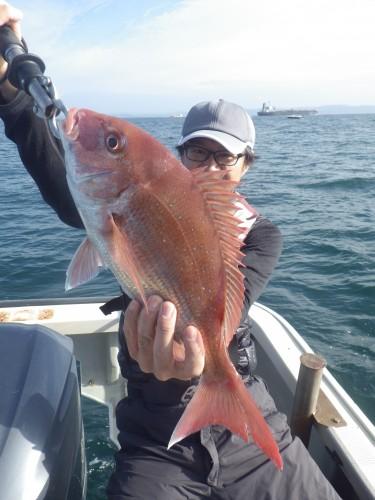 FISH8520
