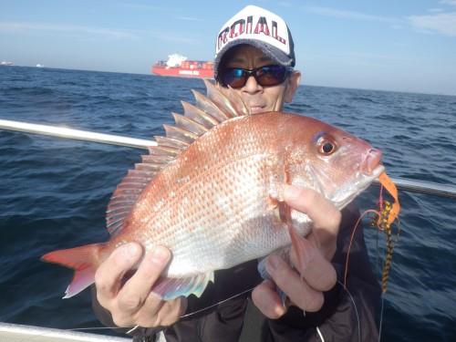 FISH8522