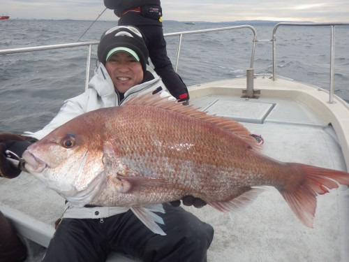 FISH8622