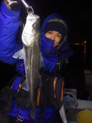 FISH8664