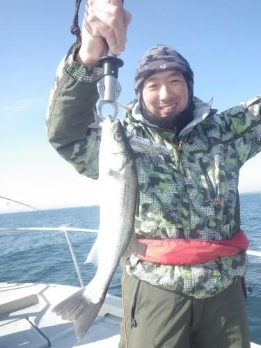 FISH8679