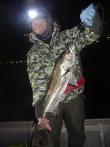 FISH8686