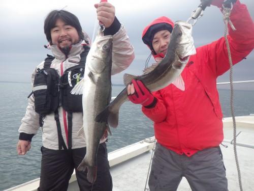 FISH8740