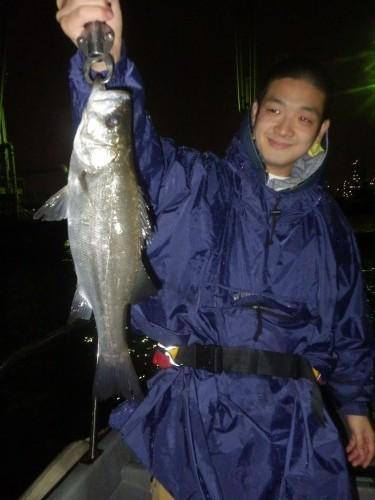 FISH8943