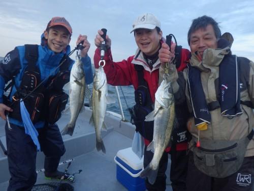 FISH8976