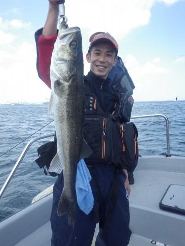 FISH8981