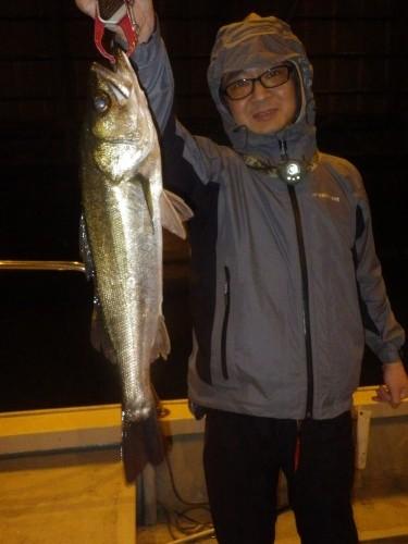 FISH9028