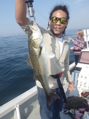 FISH9031