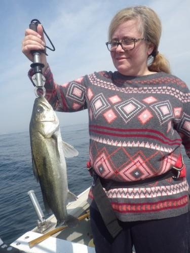 FISH9033