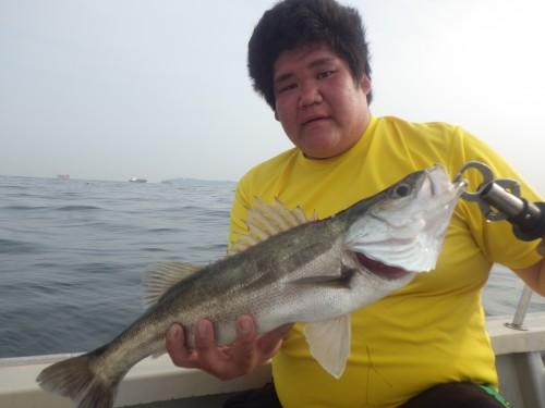 FISH9051