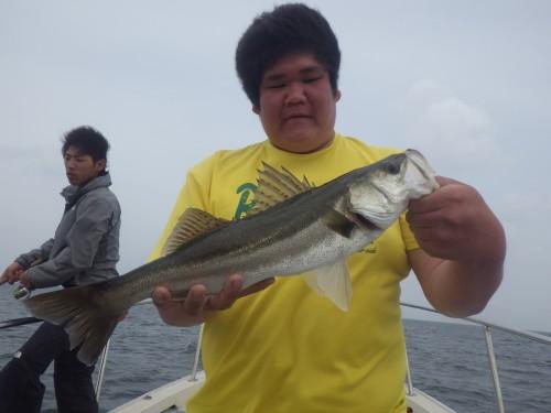 FISH9070