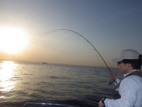 FISH9076