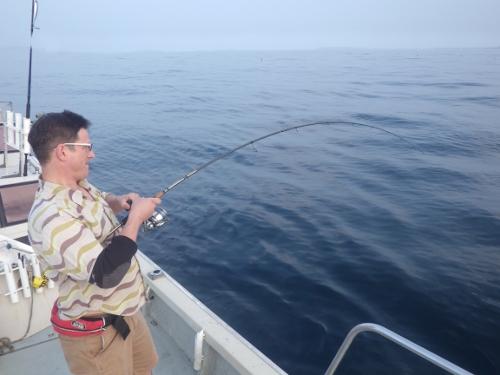FISH9350e