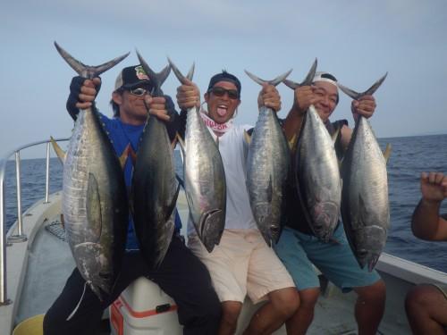 FISH9512
