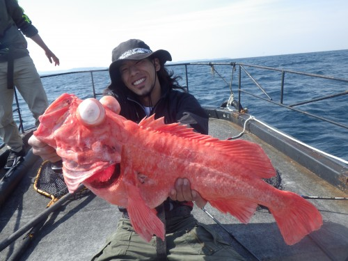 fish5082