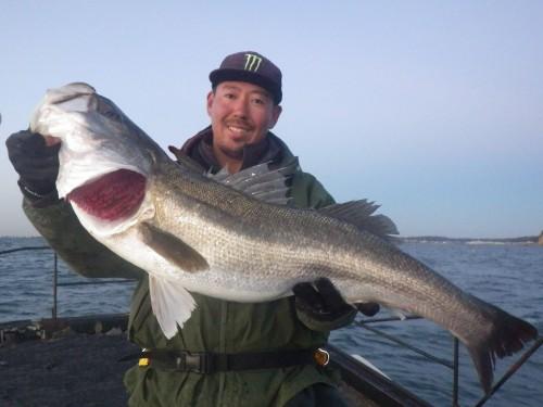 FISH6474ee