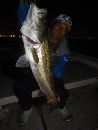 fish0284