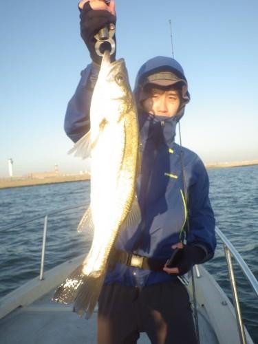 fish0311