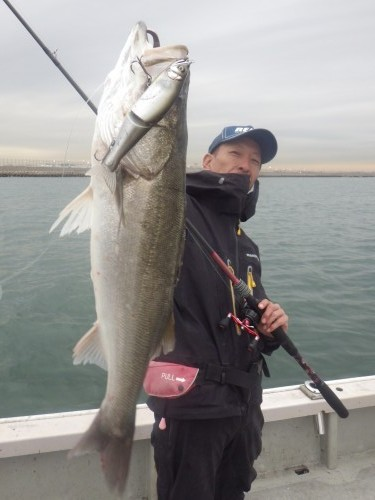 fish0337
