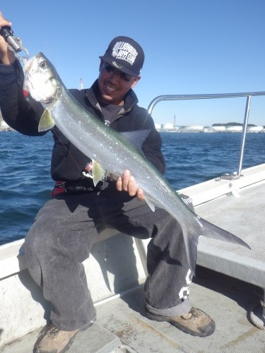 fish0503