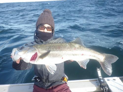 fish0538