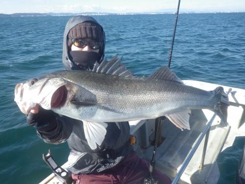 fish0540