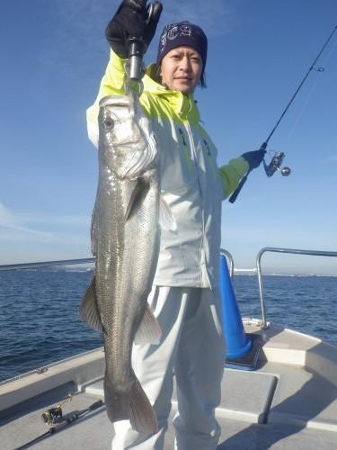 fish0554