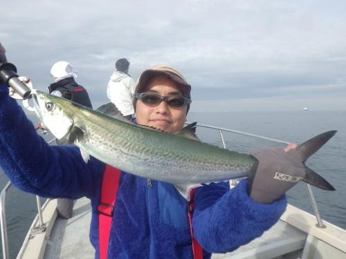 fish0569