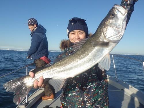 fish0589e