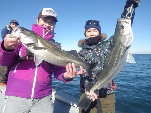 fish0594