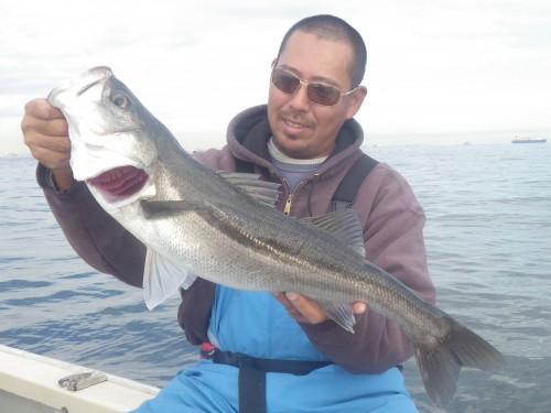 fish0601c