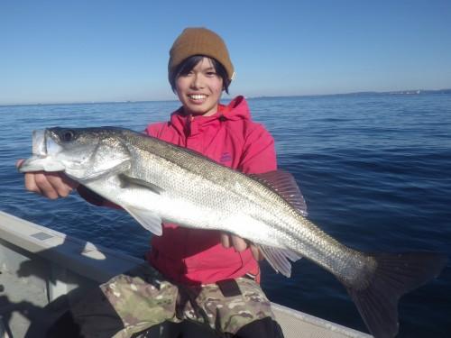 fish0649